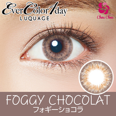 Ever Color 1day Luquage Foggy chocolat 1箱10枚入り